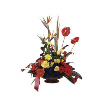 Arrangement of Mixed Coloured Flowers